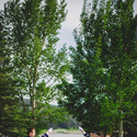 1415903793 thumb 1415666764 content rustic colorado barn wedding 18  1