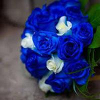 blue, Flowers, Bouquet, Wedding