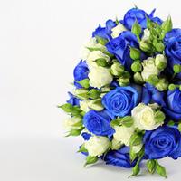 blue, Flowers, Bouquet, wedd j ng