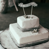 Silver and White Winter Cake