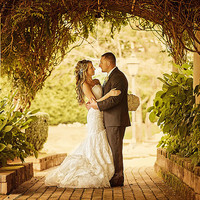 Importance of Hiring a Professional Wedding Videographer