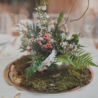 Waxflower and Greens