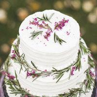 Elegant Winter Cake