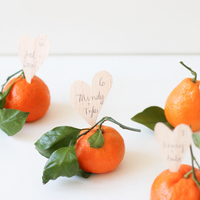DIY: Satsuma Escort Cards