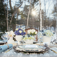 Spring Flowers on a Winter Table