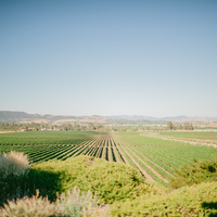 Choosing a Wine Country Venue
