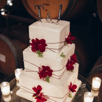 Tim and Jonah's Wedding Cake
