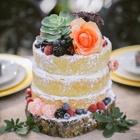 Mini Succulent Naked Cake