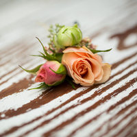Romantic Rose Boutonniere