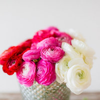 DIY: Ombre Ranunculus Arrangement