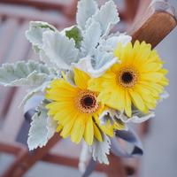 Yellow Daisy Aisle Markers