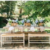 Fresh Vineyard Picnic Tablescape