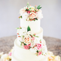 Pink Rose and Berry Cake