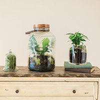 DIY: Terrarium Decor