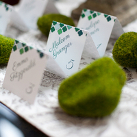 Modern Moss Escort Card Display