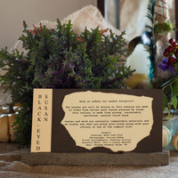 Compostable Place Settings