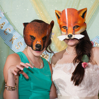 Fox Mask Photo Props
