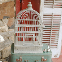 Vintage Suitcase and Bird Cage