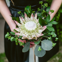 King Protea Bridesmaid Bouquet