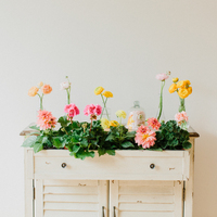 DIY: Floral Drawer