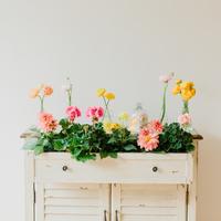 DIY: Floral Drawer