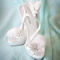 Dana's Bridal Shoes