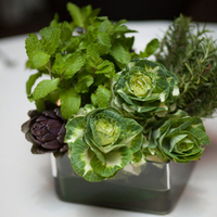 Eco-Friendly Centerpieces