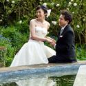 1471935065 thumb photo preview dream weddings hawaii  276